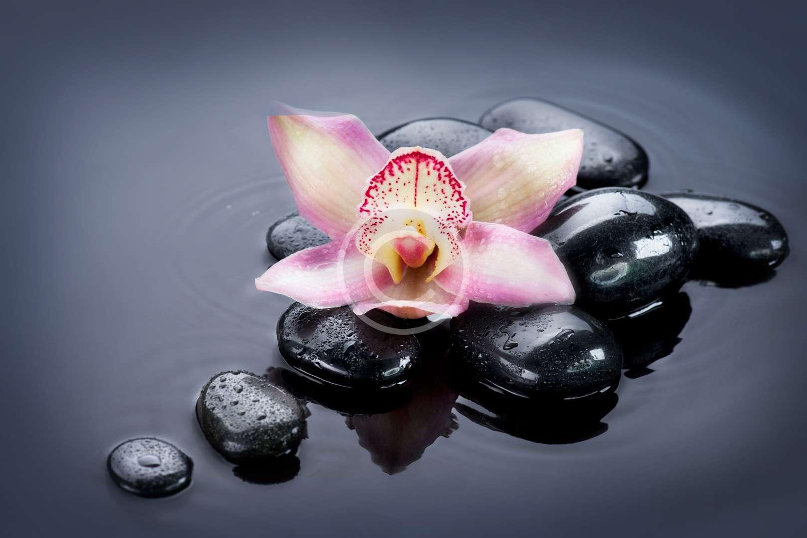 Sahaj Samadhi Meditation
